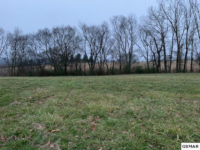 Lot 11 Rippling Waters Circle, Sevierville, TN 37876 (#220831) :: The Terrell Team