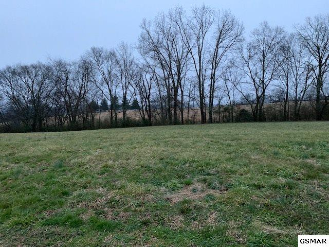 Lot 12 Rippling Waters Circle, Sevierville, TN 37876 (#220832) :: The Terrell Team