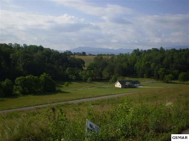 Lot 18 English Fields Dr., Newport, TN 37821 (#220852) :: Billy Houston Group