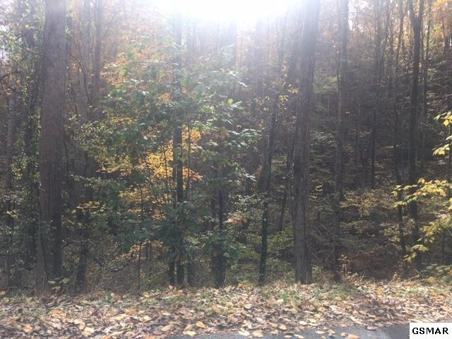 Lot 351A Rose Ct, Sevierville, TN 37876 (#221052) :: The Terrell Team