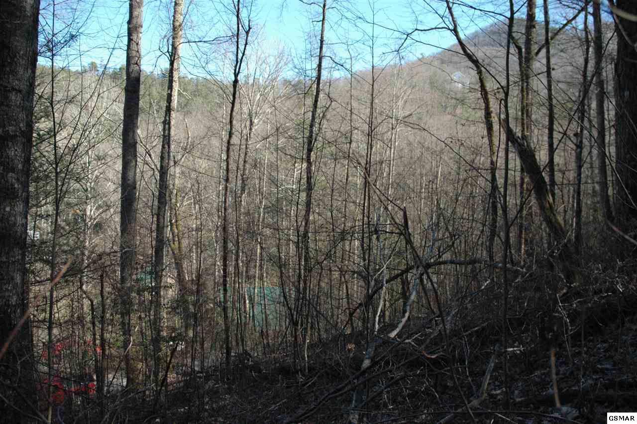Lot 6 Wilderness Mountain Road - Photo 1