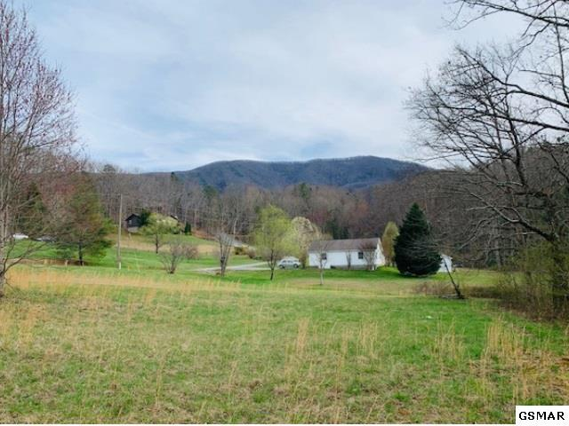Lot 8 Pleasant View Ln, Sevierville, TN 37862 (#221176) :: The Terrell Team