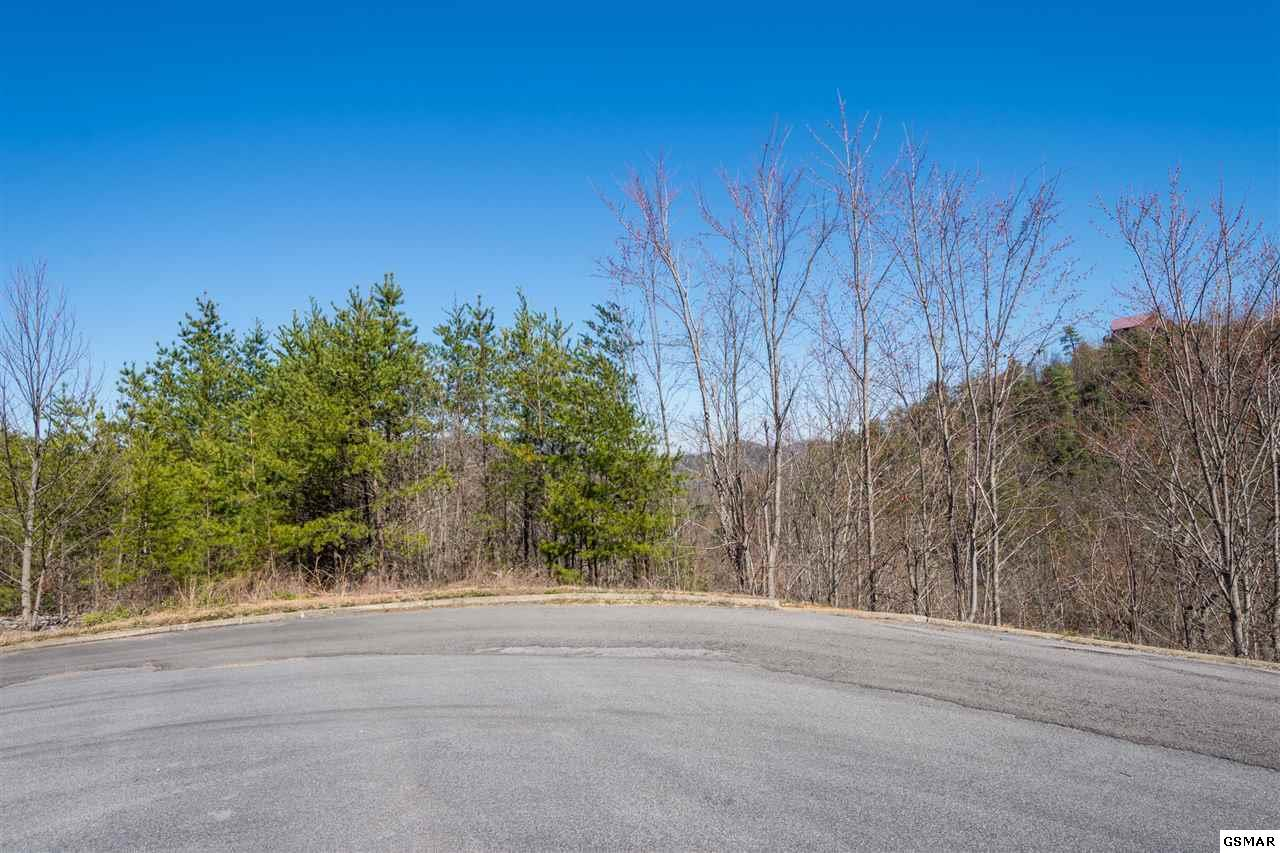 Lot 57/58 Grouse Ridge Lane - Photo 1