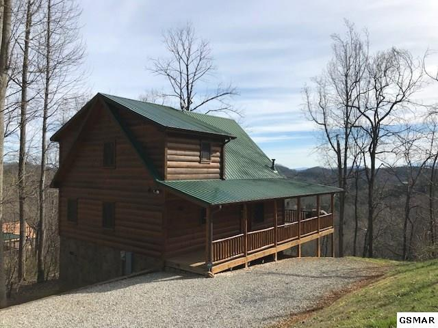 3435 Lonesome Pine Way, Sevierville, TN 37862 (#221267) :: Billy Houston Group