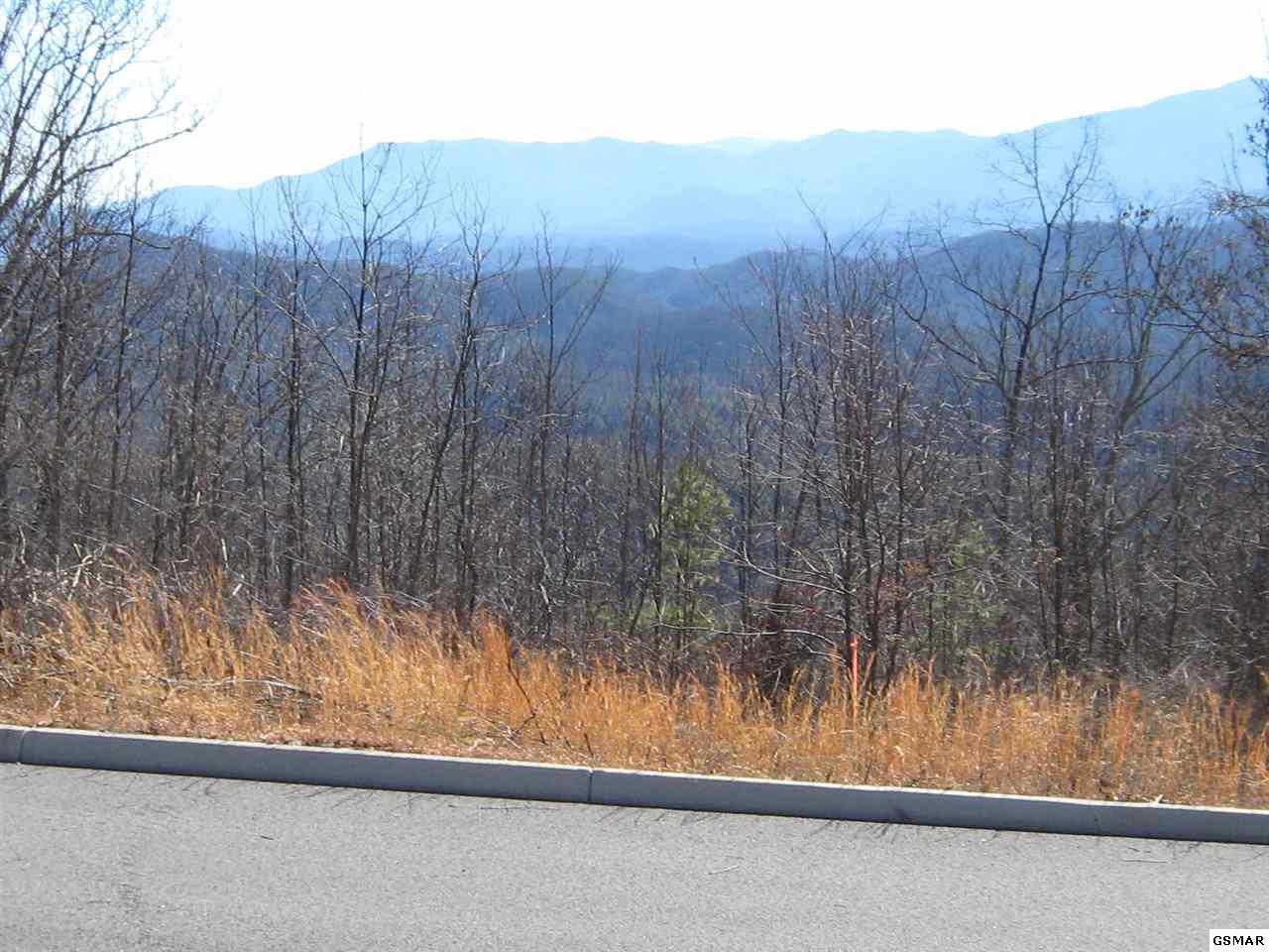 Shell Mountain Road - Photo 1