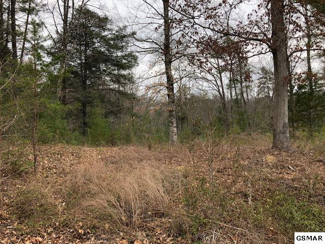 LOT 97 Bear Crossing Way, Sevierville, TN 37862 (#221371) :: Colonial Real Estate