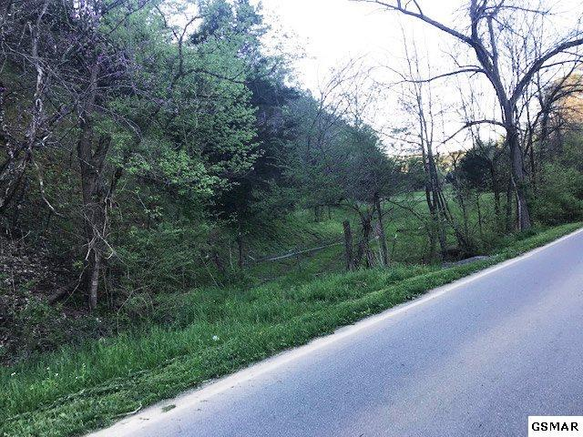 Goose Gap Road, Sevierville, TN 37862 (#221940) :: Colonial Real Estate