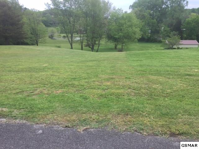 000 Woodmount Way, Newport, TN 37821 (#222041) :: Prime Mountain Properties
