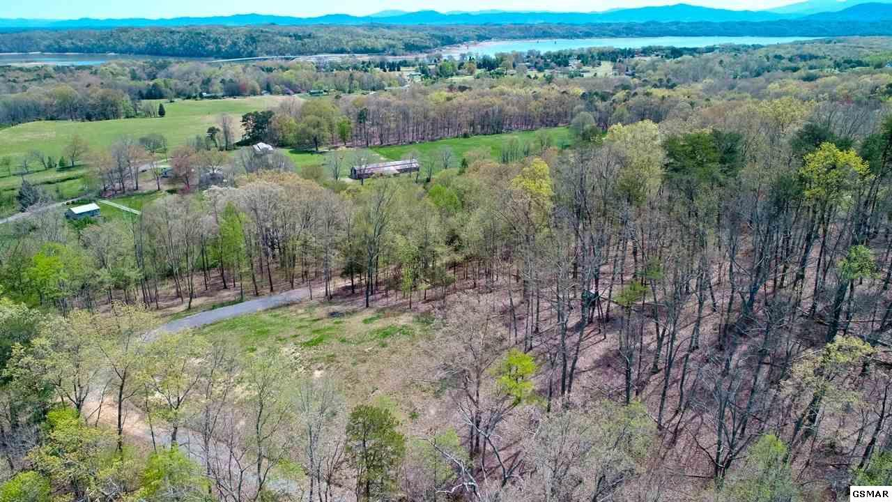 2.6 ACRES Shady Hollow Rd - Photo 1