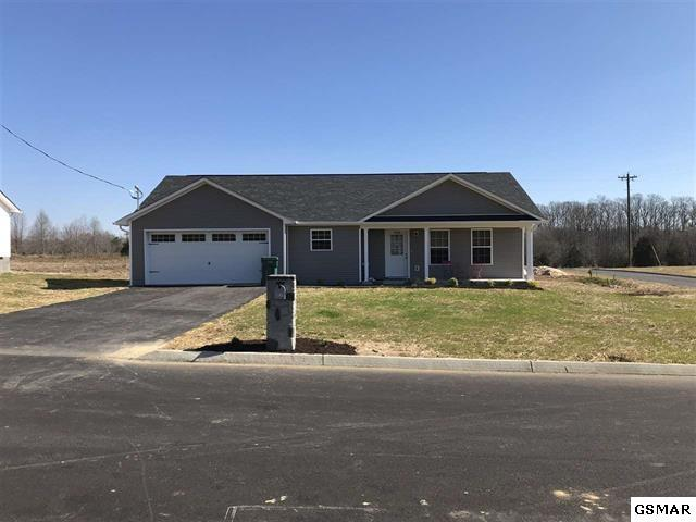 2054 Jonathan, White Pine, TN 37890 (#222123) :: Prime Mountain Properties