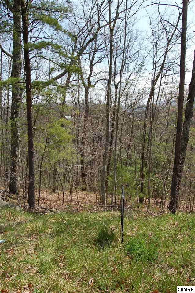 Lot 18 B1 Chamberlain Ln, Sevierville, TN 37862 (#222140) :: Colonial Real Estate