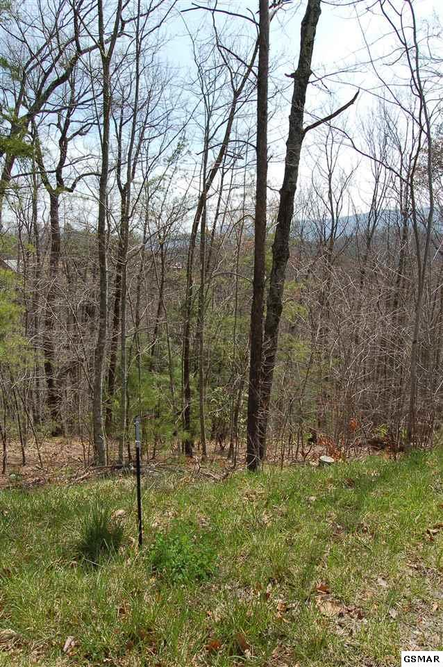 LOT 18B2 Chamberlain Ln, Sevierville, TN 37862 (#222141) :: Colonial Real Estate
