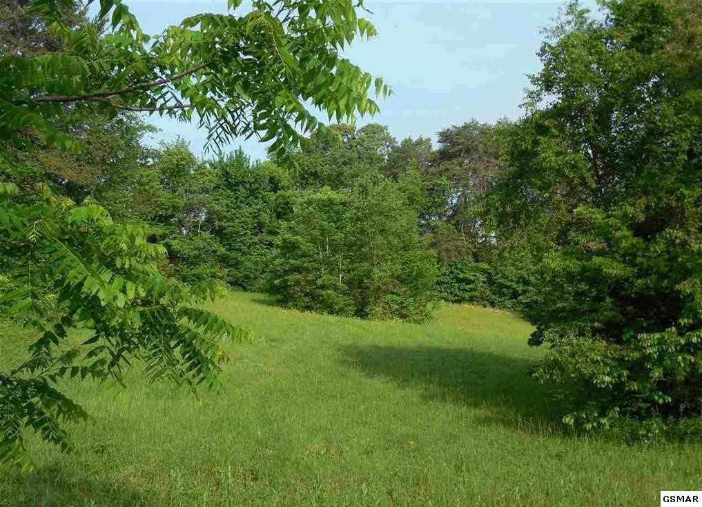 Lot 59 Battlefield Dr - Photo 1