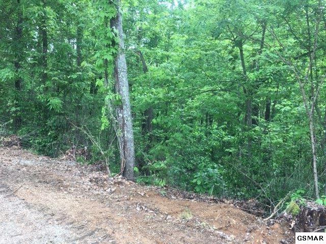 Lot 8 Honeysuckle Ln, Sevierville, TN 37876 (#222399) :: Colonial Real Estate
