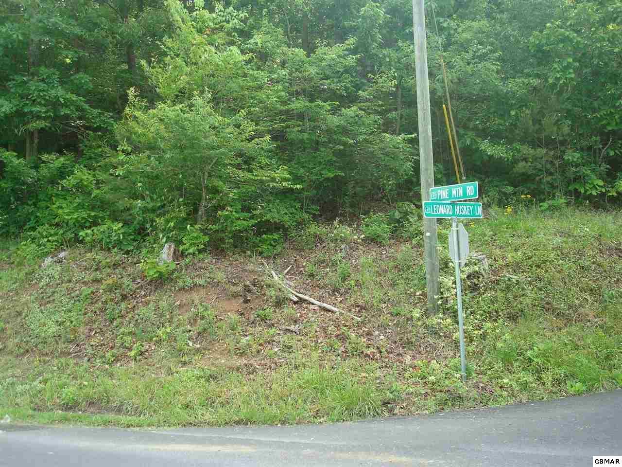 Lot Lot 11 Pine Way - Photo 1