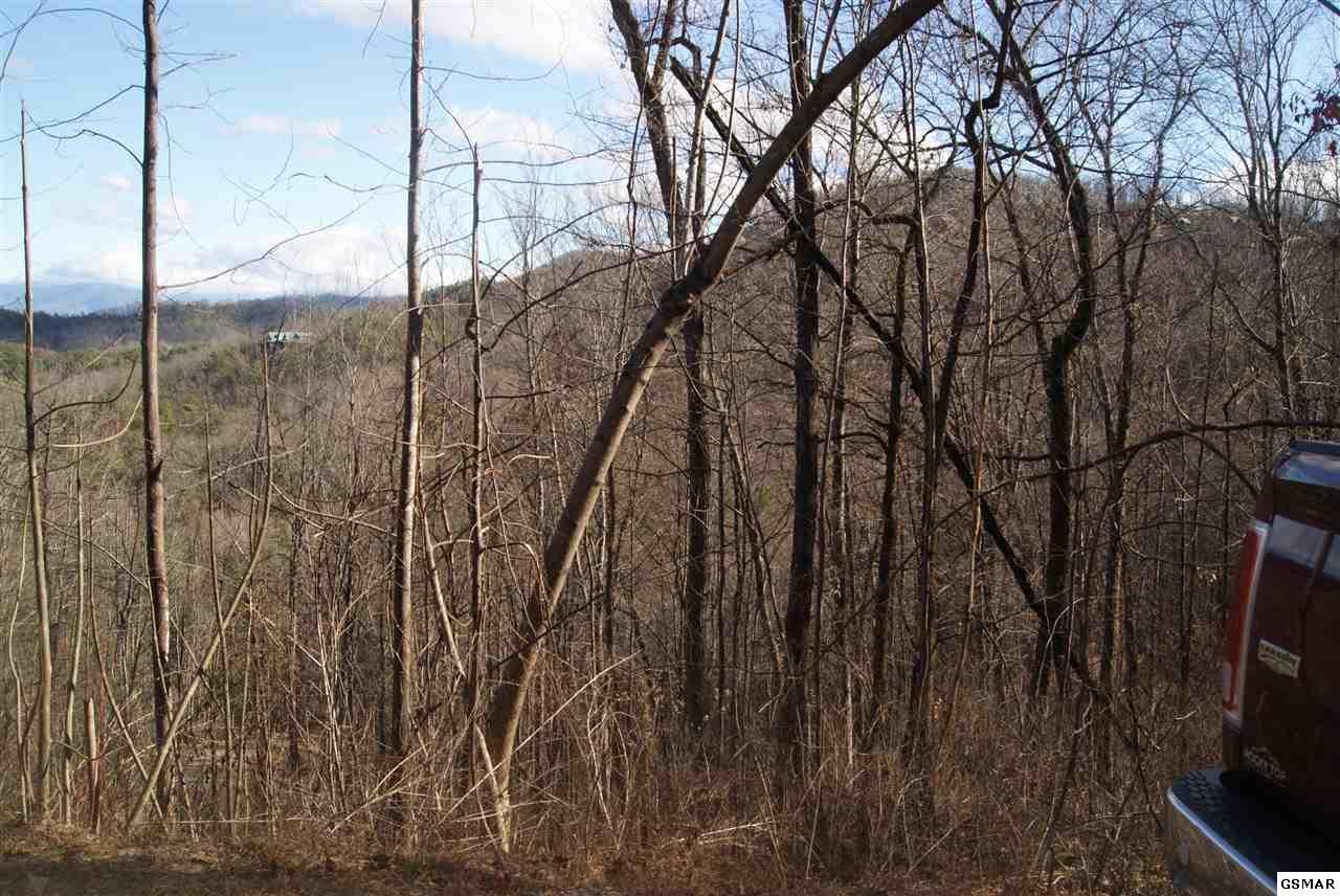 Lonesome Pine Way - Photo 1