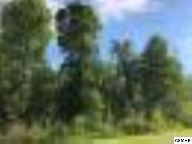 Lot 15W Hawken, Walland, TN 37886 (#222833) :: Prime Mountain Properties