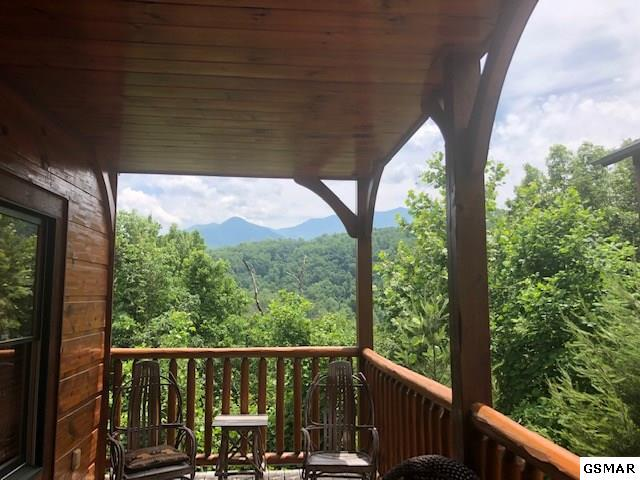 828 Resort Way, Gatlinburg, TN 37738 (#222867) :: The Terrell Team