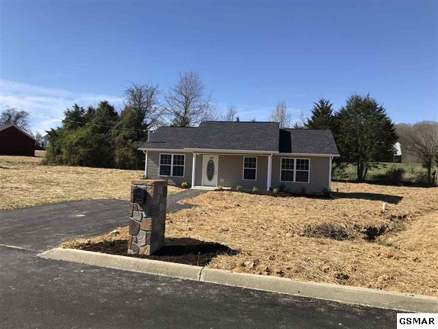 Lot 5 Rosella Dr, White Pine, TN 37890 (#222930) :: Prime Mountain Properties