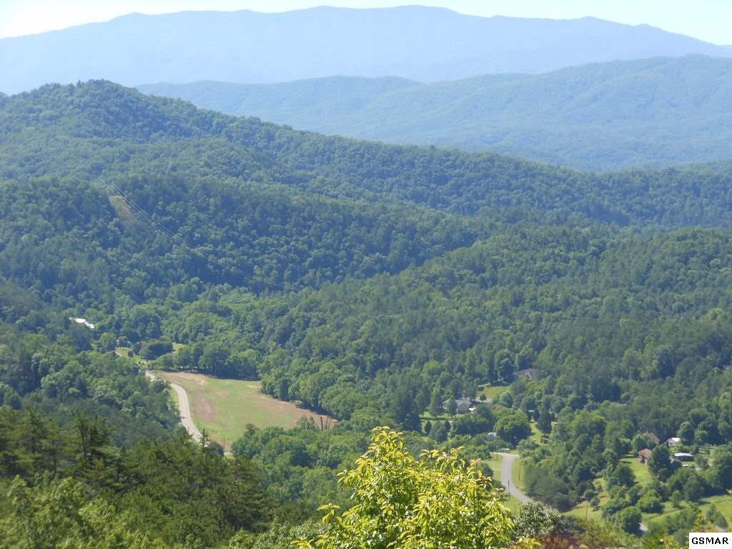 Lot 18 Autumn Ridge Way - Photo 1