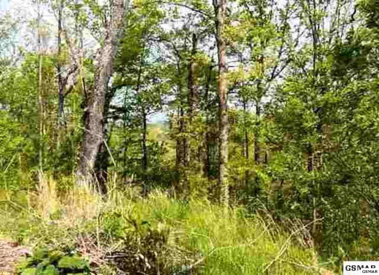 Lot 76 Bluff Ridge Road - Photo 1