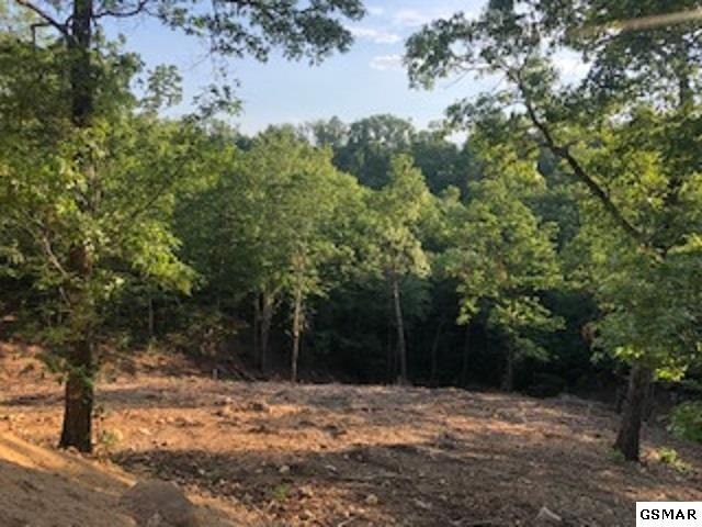 3113 Summit Trails Dr, Sevierville, TN 37862 (#223405) :: Colonial Real Estate