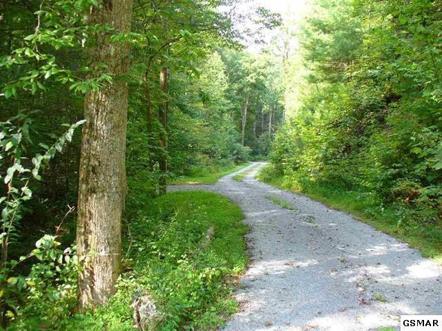 Paradise Falls Way, Sevierville, TN 37862 (#223408) :: Prime Mountain Properties