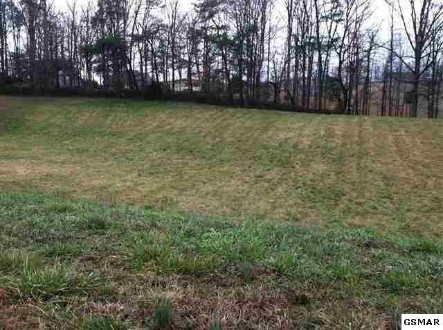 Lot Lot 50 Robert Ridge Rd, Sevierville, TN 37862 (#223525) :: Colonial Real Estate