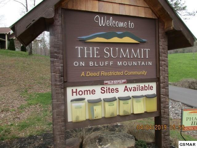 LOT 128 Bluff Mtn Rd, Sevierville, TN 37862 (#223573) :: The Terrell Team
