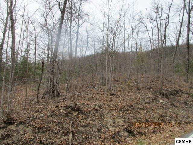 LOT 129 Bluff Mtn Rd, Sevierville, TN 37862 (#223574) :: The Terrell Team