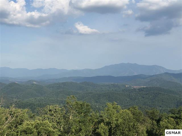 lot 131 Bluff Mountain Rd, Sevierville, TN 37862 (#223576) :: Colonial Real Estate