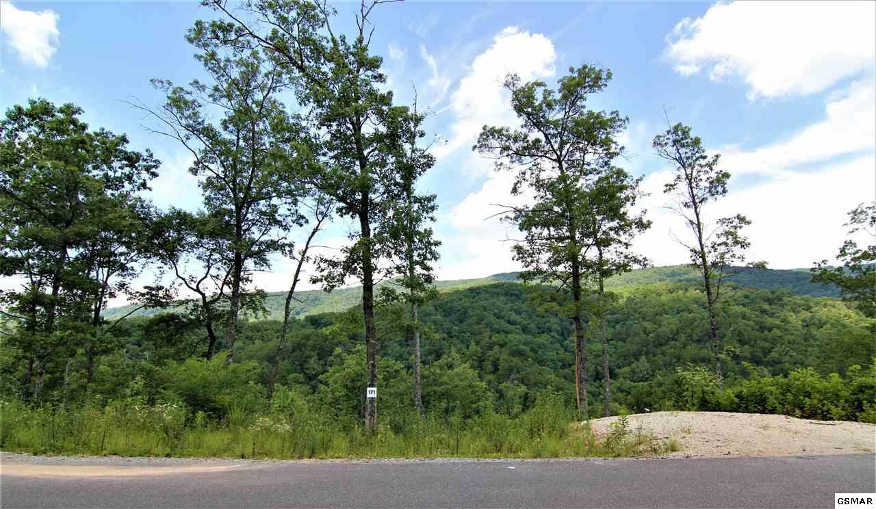 Lot 171 Smoky Bluff Trail - Photo 1