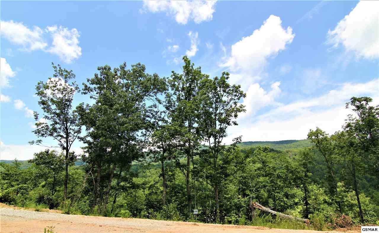 Lot 172 Smoky Bluff Trail - Photo 1