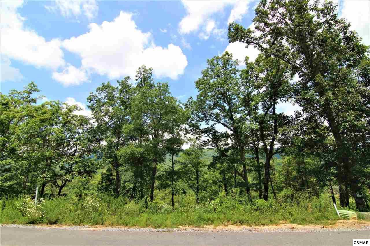 Lot 174 Smoky Bluff Trail - Photo 1