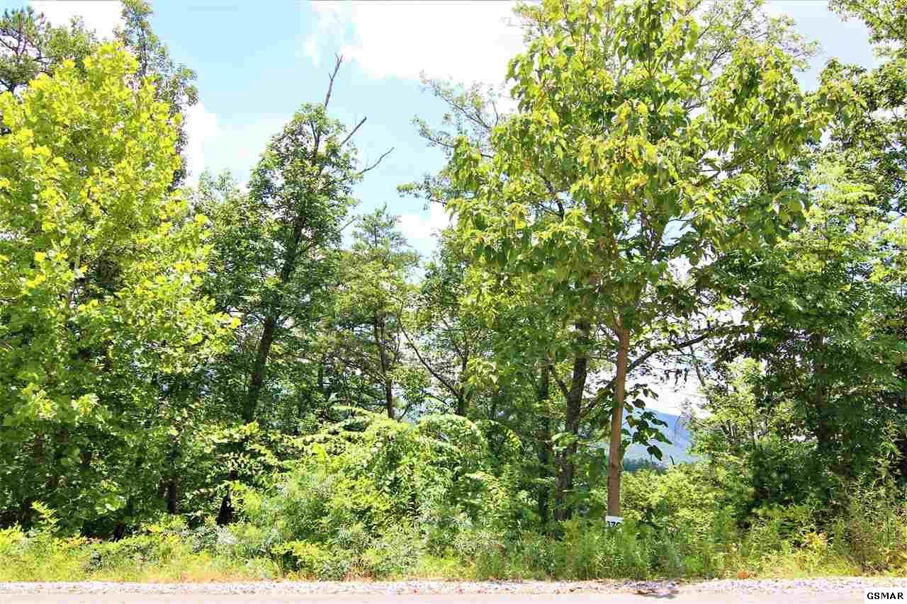 Lot 179 Smoky Bluff Trail - Photo 1
