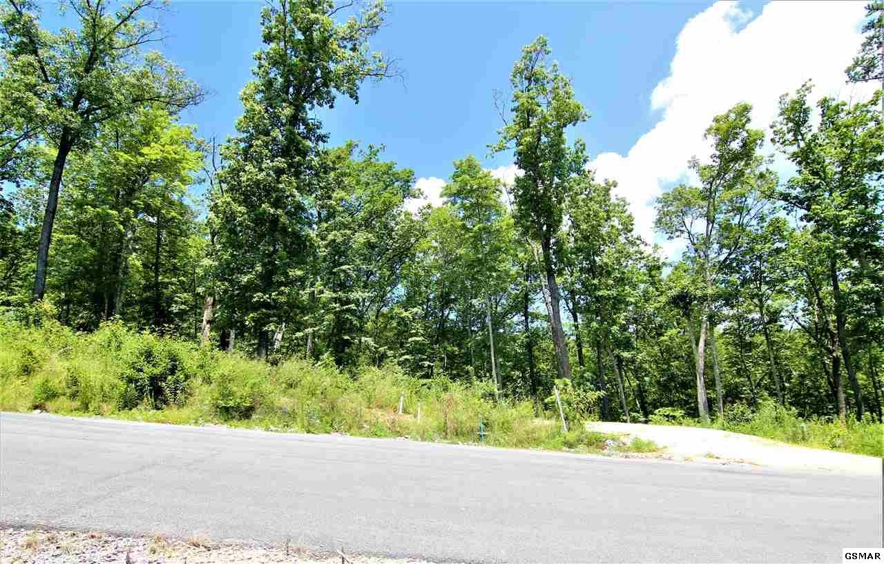 Lot 183 Winterberry Trail - Photo 1