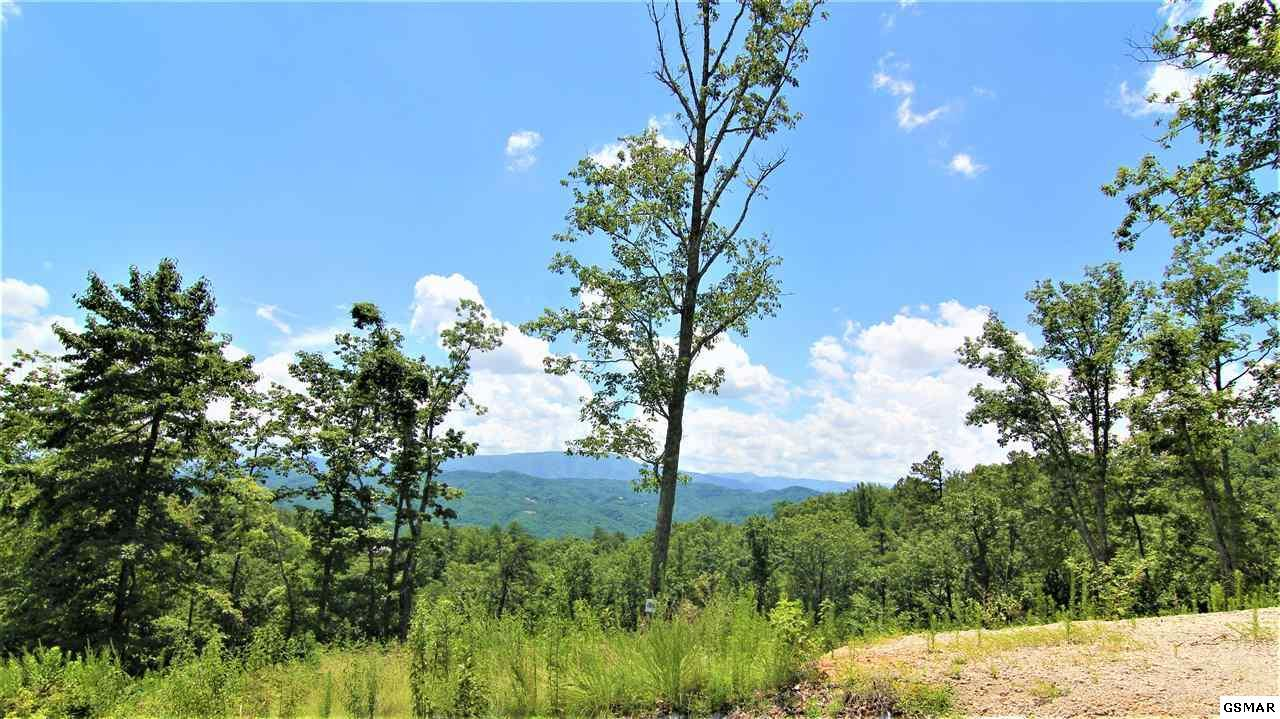 Lot 186 Winterberry Trail - Photo 1