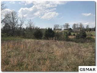 Lot 2 Old Newport Highway, Sevierville, TN 37876 (#224062) :: Billy Houston Group
