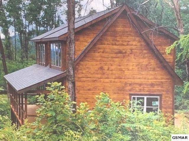 834 Pine Top Lane, Gatlinburg, TN 37738 (#224676) :: SMOKY's Real Estate LLC
