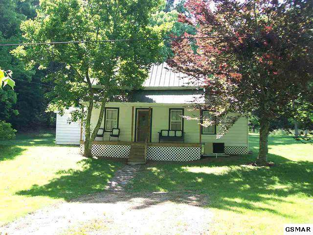 1440 Ponderosa Rd, Parrottsville, TN 37843 (#224684) :: Colonial Real Estate