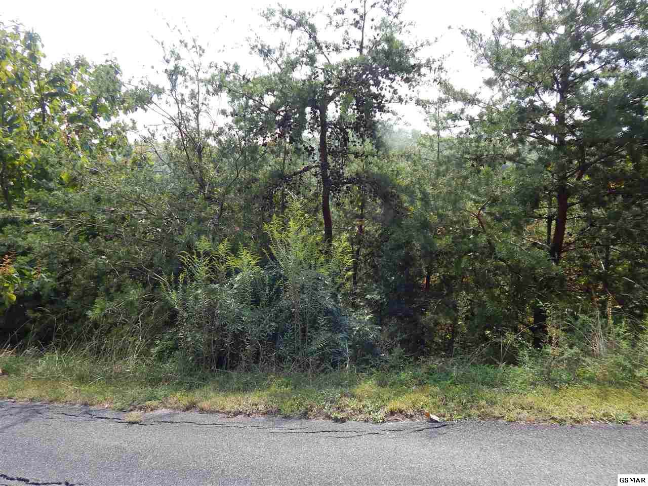 Lot 176E Jones Creek Lane - Photo 1