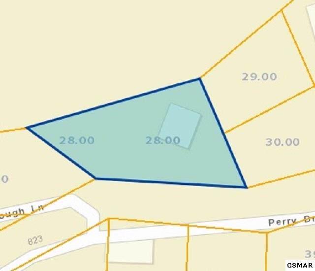 821 Perry Dr, Gatlinburg, TN 37738 (#224700) :: SMOKY's Real Estate LLC
