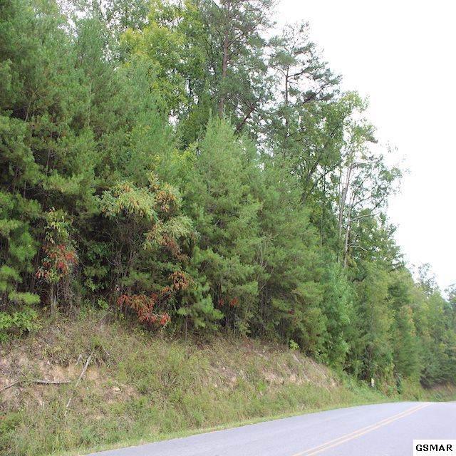 Lot 14A Sharp Rd, Sevierville, TN 37876 (#224725) :: The Terrell Team
