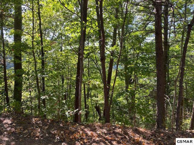 Lot 0242 Ski View Lane, Sevierville, TN 37876 (#224859) :: Four Seasons Realty, Inc