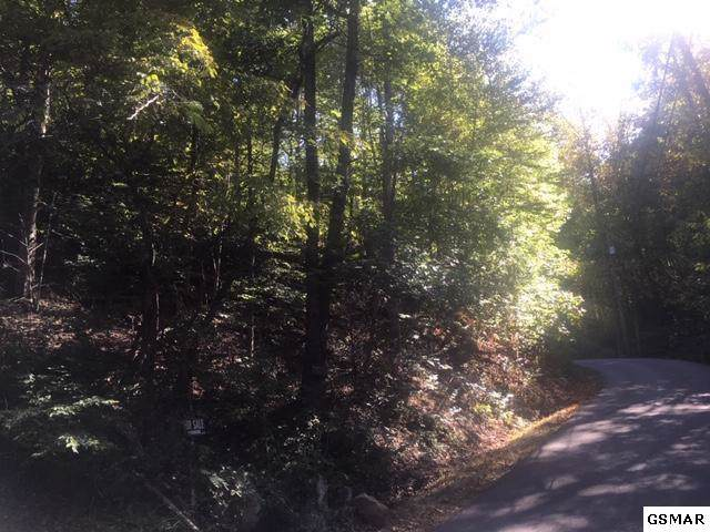 Lot 21 Tanrac Trl, Gatlinburg, TN 37738 (#224874) :: Four Seasons Realty, Inc