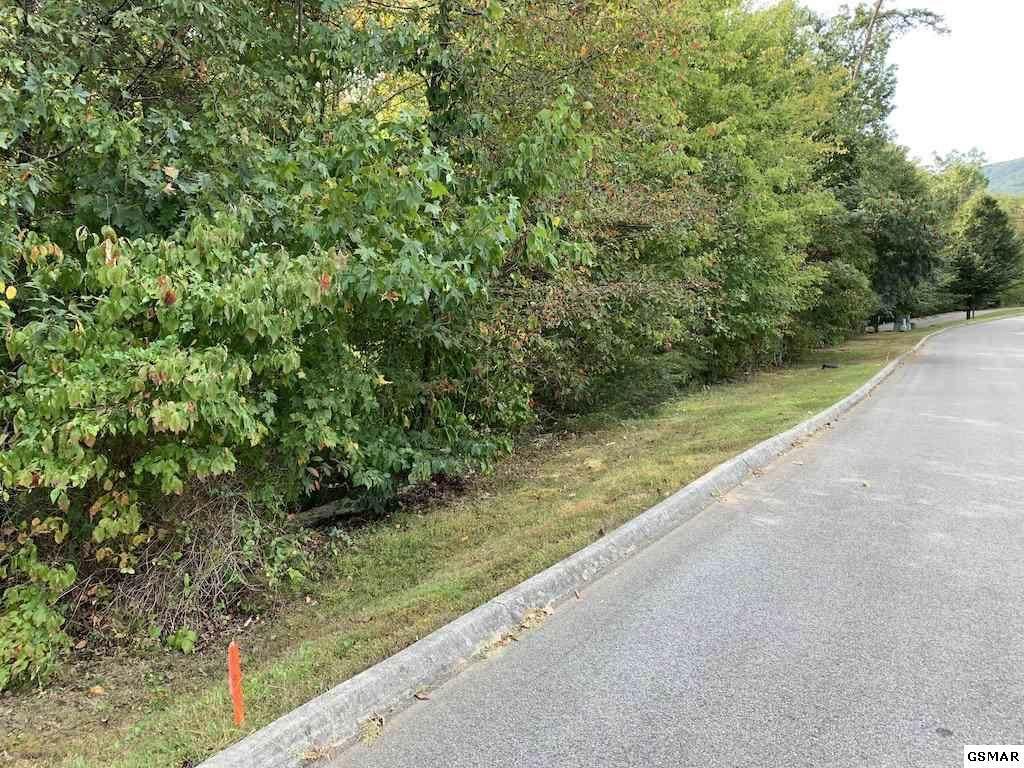 Lot 84 Smoky Cove Rd. - Photo 1