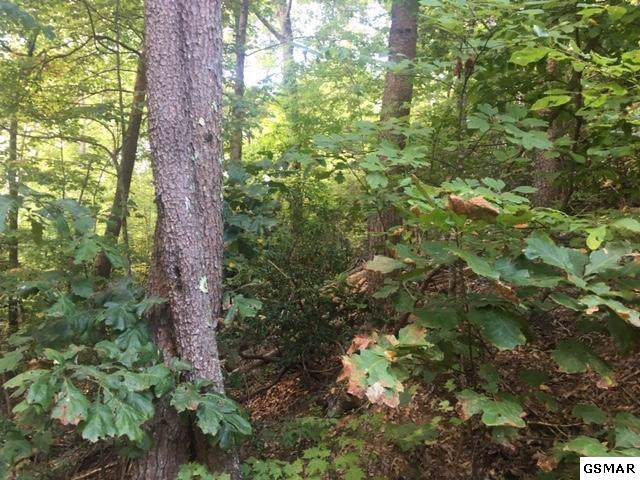 Lot 1275 E View Dr, Sevierville, TN 37876 (#225177) :: Four Seasons Realty, Inc