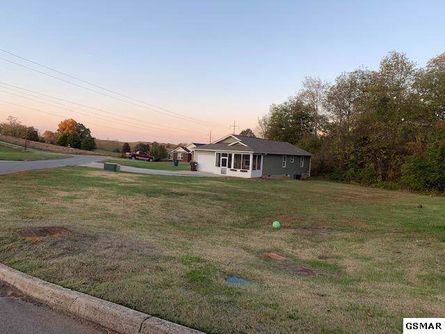 1518 Patricia Holt Boulevard, Sevierville, TN 37862 (#225575) :: SMOKY's Real Estate LLC