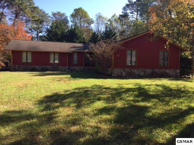 1550 Timber Trail, Newport, TN 37821 (#225616) :: Colonial Real Estate
