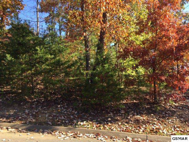 Lot 107 Smoky Cove Rd, Sevierville, TN 37862 (#225667) :: Four Seasons Realty, Inc